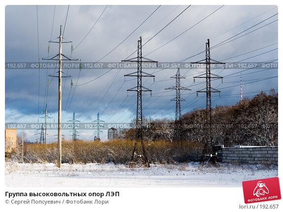 Купить «Группа высоковольтных опор ЛЭП», фото № 192657, снято 28 января 2008 г. (c) Сергей Попсуевич / Фотобанк Лори