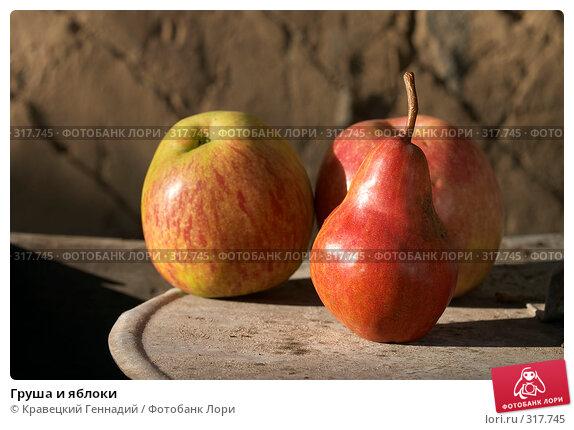 Груша и яблоки, фото № 317745, снято 6 сентября 2004 г. (c) Кравецкий Геннадий / Фотобанк Лори