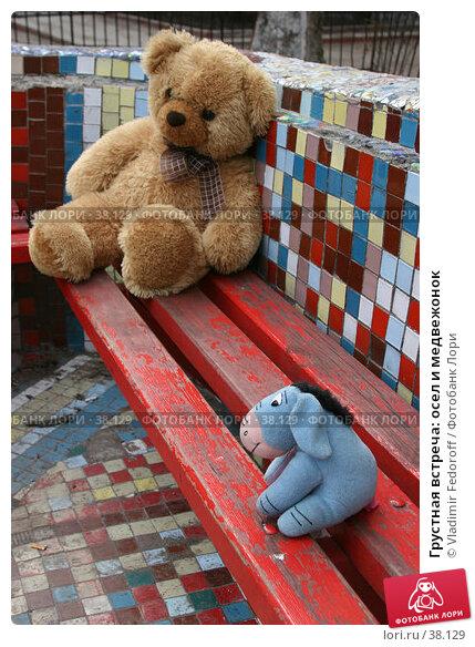 Грустная встреча: осел и медвежонок, фото № 38129, снято 15 апреля 2007 г. (c) Vladimir Fedoroff / Фотобанк Лори