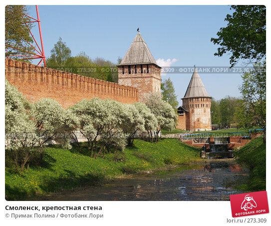 Г.Смоленск, крепостная стена, фото № 273309, снято 5 мая 2008 г. (c) Примак Полина / Фотобанк Лори