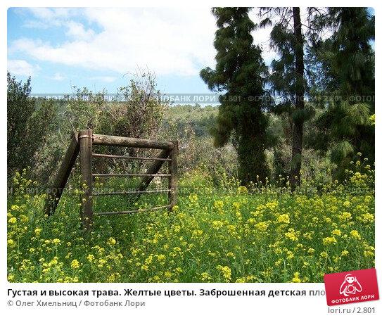 Густая и высокая трава. Желтые цветы. Заброшенная детская площадка, фото № 2801, снято 11 марта 2006 г. (c) Олег Хмельниц / Фотобанк Лори
