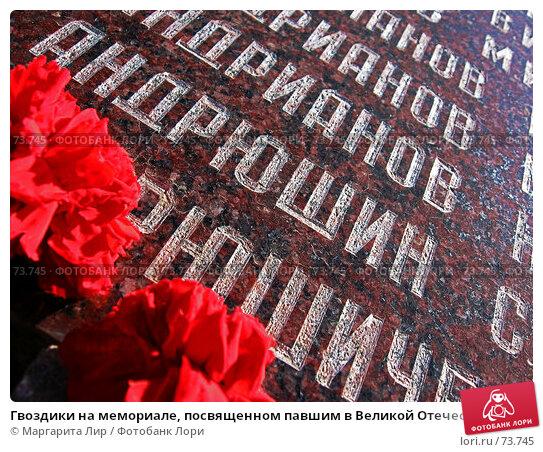 Купить «Гвоздики на мемориале, посвященном павшим в Великой Отечественной войне», фото № 73745, снято 6 мая 2007 г. (c) Маргарита Лир / Фотобанк Лори