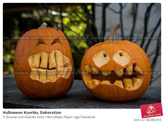 Halloween Kuerbis, Dekoration. Стоковое фото, фотограф Zoonar.com/Günter Lenz / age Fotostock / Фотобанк Лори