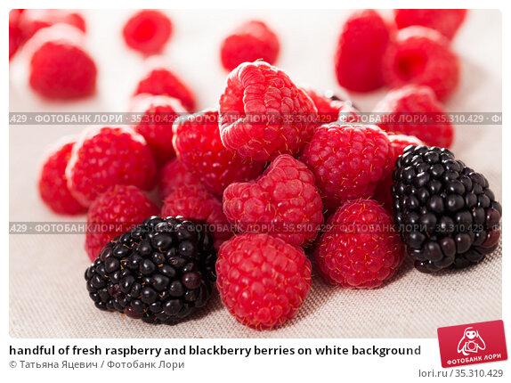 handful of fresh raspberry and blackberry berries on white background. Стоковое фото, фотограф Татьяна Яцевич / Фотобанк Лори
