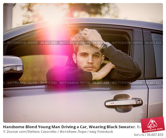 Handsome Blond Young Man Driving a Car, Wearing Black Sweater. hand... Стоковое фото, фотограф Zoonar.com/Stefano Cavoretto / easy Fotostock / Фотобанк Лори