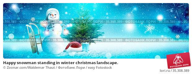 Happy snowman standing in winter christmas landscape. Стоковое фото, фотограф Zoonar.com/Waldemar Thaut / easy Fotostock / Фотобанк Лори