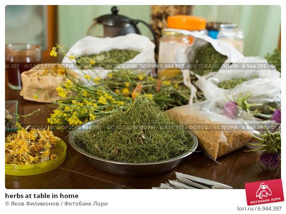 Купить «herbs at table in home», фото № 6944397, снято 20 мая 2014 г. (c) Яков Филимонов / Фотобанк Лори