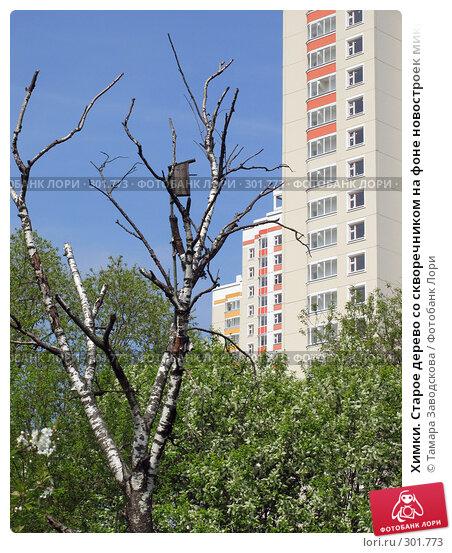 Химки. Старое дерево со скворечником на фоне новостроек микрорайона Юбилейный, эксклюзивное фото № 301773, снято 2 мая 2008 г. (c) Тамара Заводскова / Фотобанк Лори