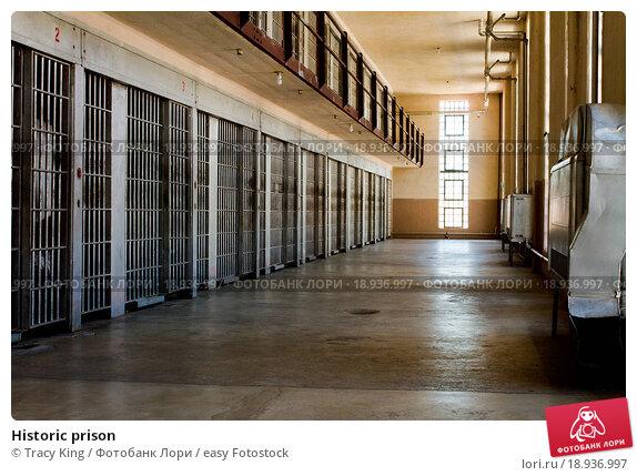 prison punishment or rehabilitation essay