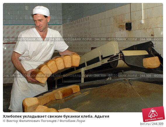 Хлебопек укладывает свежие буханки хлеба. Адыгея, фото № 244309, снято 14 сентября 2006 г. (c) Виктор Филиппович Погонцев / Фотобанк Лори