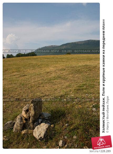 Купить «Холмистый пейзаж. Поле и крупные камни на переднем плане», фото № 228289, снято 19 августа 2007 г. (c) Harry / Фотобанк Лори