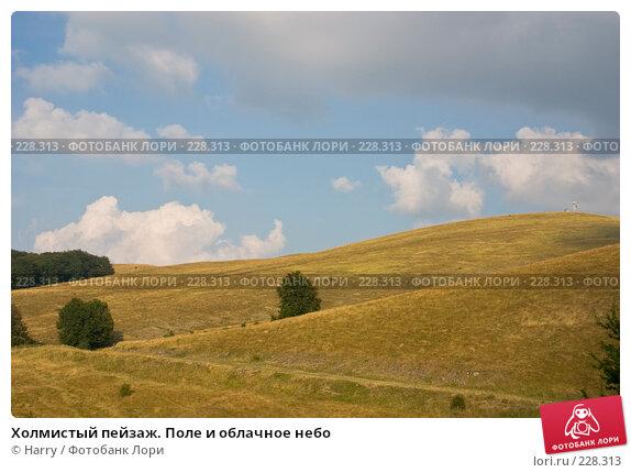 Купить «Холмистый пейзаж. Поле и облачное небо», фото № 228313, снято 19 августа 2007 г. (c) Harry / Фотобанк Лори