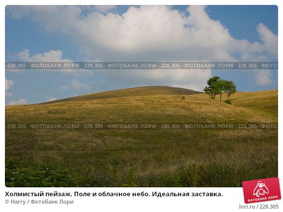 Холмистый пейзаж. Поле и облачное небо. Идеальная заставка., фото № 228305, снято 19 августа 2007 г. (c) Harry / Фотобанк Лори