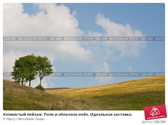 Холмистый пейзаж. Поле и облачное небо. Идеальная заставка., фото № 228309, снято 19 августа 2007 г. (c) Harry / Фотобанк Лори