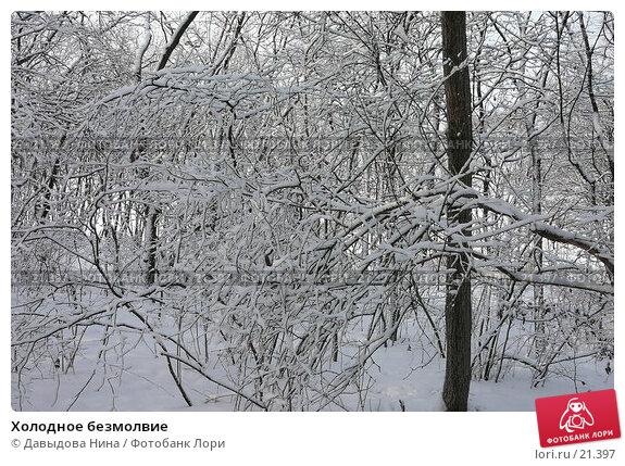 Холодное безмолвие, фото № 21397, снято 31 января 2007 г. (c) Давыдова Нина / Фотобанк Лори
