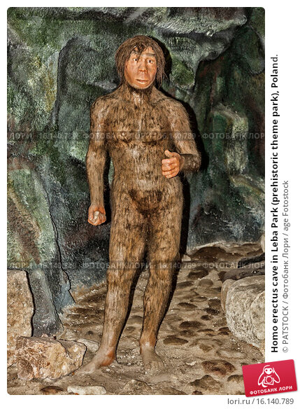 Homo erectus cave in Leba Park (prehistoric theme park), Poland. (2011 год). Редакционное фото, фотограф PATSTOCK / age Fotostock / Фотобанк Лори