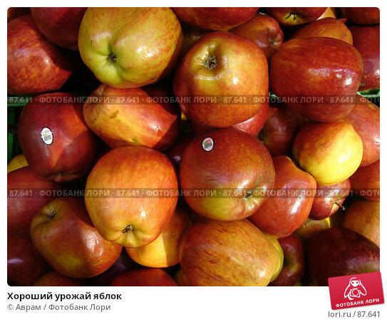 Хороший урожай яблок, фото № 87641, снято 1 мая 2007 г. (c) Аврам / Фотобанк Лори