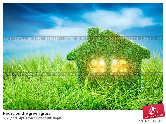 Купить «House on the green grass», фото № 6368313, снято 21 ноября 2013 г. (c) Андрей Армягов / Фотобанк Лори