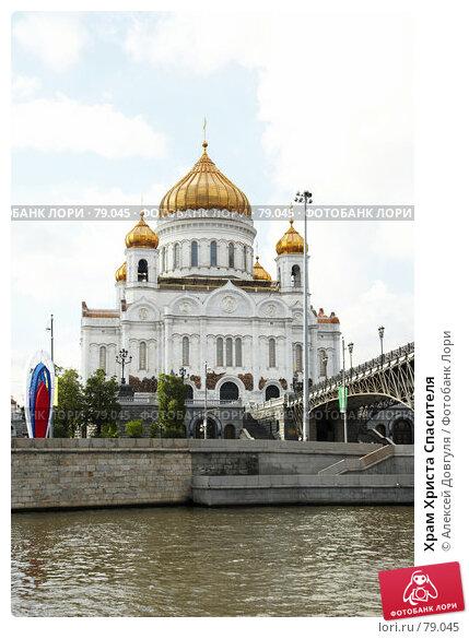 Купить «Храм Христа Спасителя», фото № 79045, снято 1 сентября 2007 г. (c) Алексей Довгуля / Фотобанк Лори