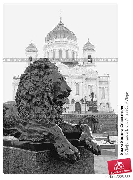 Храм Христа Спасителя, фото № 223353, снято 4 февраля 2008 г. (c) Лифанцева Елена / Фотобанк Лори