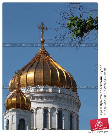 Храм Христа Спасителя. Купол, фото № 307857, снято 22 июля 2006 г. (c) Тарановский Д. / Фотобанк Лори