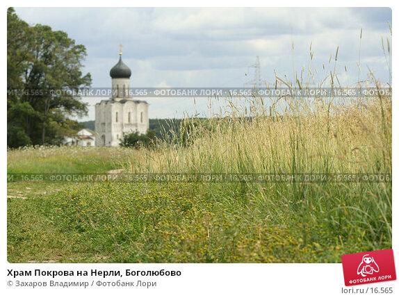 Храм Покрова на Нерли, Боголюбово, фото № 16565, снято 9 июля 2005 г. (c) Захаров Владимир / Фотобанк Лори