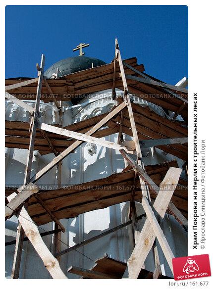 Купить «Храм Покрова на Нерли в строительных лесах», фото № 161677, снято 29 июля 2007 г. (c) Ярослава Синицына / Фотобанк Лори