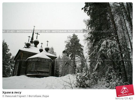 Храм в лесу, фото № 21421, снято 17 января 2017 г. (c) Николай Гернет / Фотобанк Лори