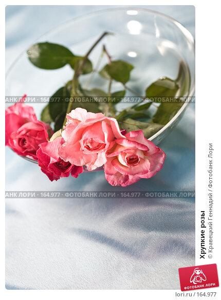 Хрупкие розы, фото № 164977, снято 3 августа 2005 г. (c) Кравецкий Геннадий / Фотобанк Лори