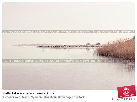 Idyllic lake scenery at wintertime. Стоковое фото, фотограф Zoonar.com/Kasper Nymann / age Fotostock / Фотобанк Лори