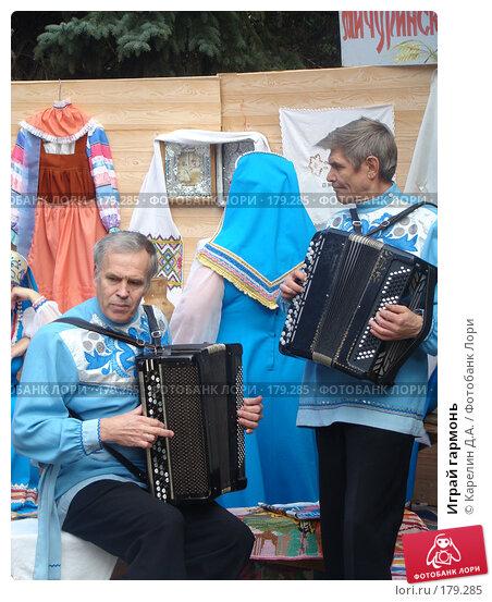 Играй гармонь, фото № 179285, снято 28 сентября 2007 г. (c) Карелин Д.А. / Фотобанк Лори