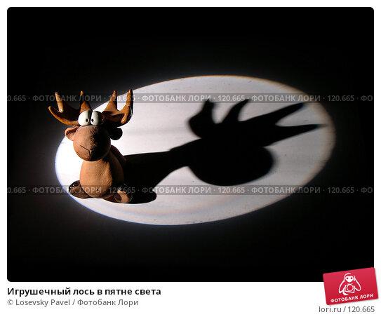 Игрушечный лось в пятне света, фото № 120665, снято 2 марта 2004 г. (c) Losevsky Pavel / Фотобанк Лори