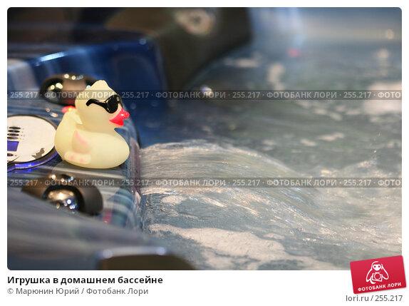Игрушка в домашнем бассейне, фото № 255217, снято 12 марта 2008 г. (c) Марюнин Юрий / Фотобанк Лори