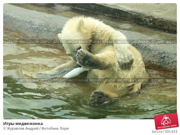 Игры медвежонка, эксклюзивное фото № 331613, снято 18 июня 2008 г. (c) Журавлев Андрей / Фотобанк Лори