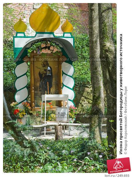 Икона пресвятой Богородицы у животворного источника, фото № 249693, снято 12 апреля 2008 г. (c) Федор Королевский / Фотобанк Лори