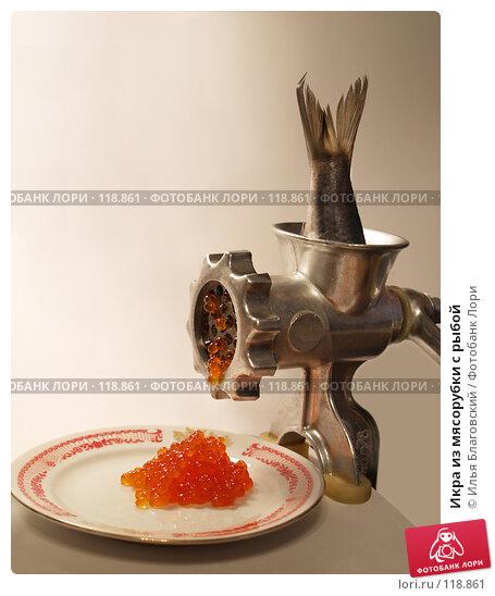 Купить «Икра из мясорубки с рыбой», фото № 118861, снято 26 декабря 2006 г. (c) Илья Благовский / Фотобанк Лори