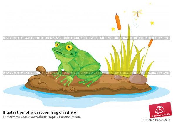 Illustration of  a cartoon frog on white. Стоковая иллюстрация, иллюстратор Matthew Cole / PantherMedia / Фотобанк Лори