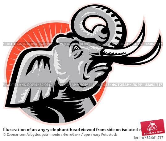 Illustration of an angry elephant head viewed from side on isolated white background. Стоковое фото, фотограф Zoonar.com/aloysius patrimonio / easy Fotostock / Фотобанк Лори