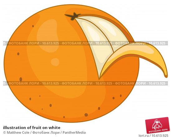illustration of fruit on white. Стоковая иллюстрация, иллюстратор Matthew Cole / PantherMedia / Фотобанк Лори
