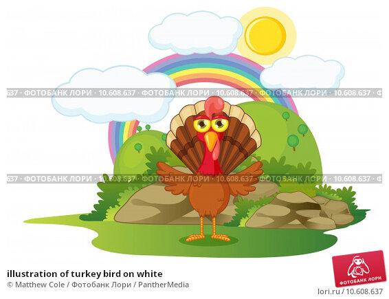 illustration of turkey bird on white. Стоковая иллюстрация, иллюстратор Matthew Cole / PantherMedia / Фотобанк Лори