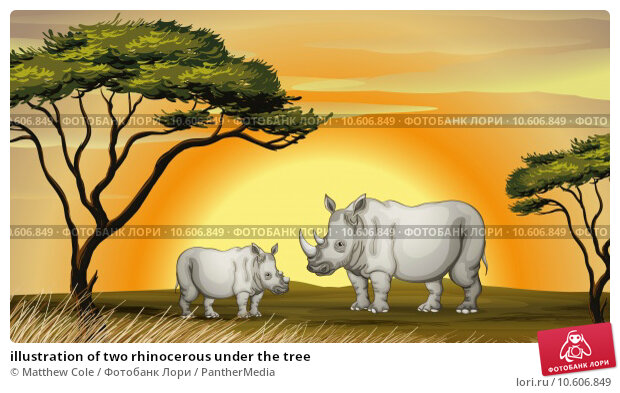 illustration of two rhinocerous under the tree. Стоковая иллюстрация, иллюстратор Matthew Cole / PantherMedia / Фотобанк Лори
