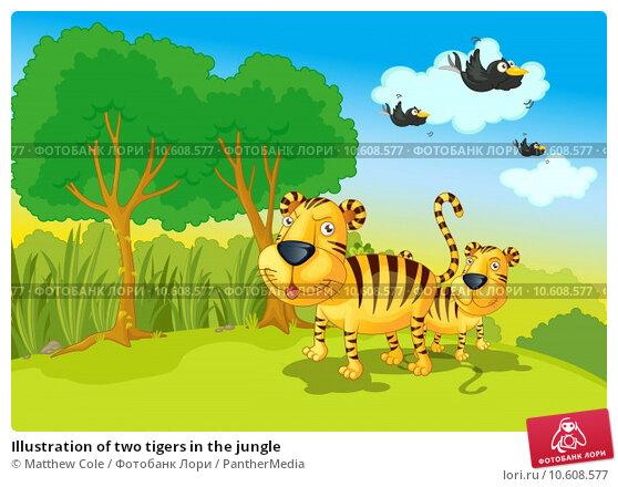 Illustration of two tigers in the jungle. Стоковая иллюстрация, иллюстратор Matthew Cole / PantherMedia / Фотобанк Лори