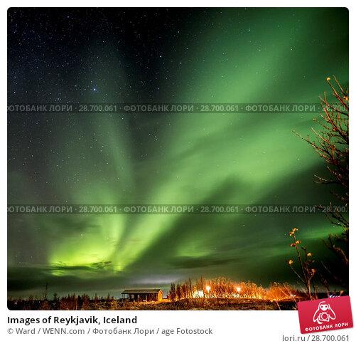 Купить «Images of Reykjavik, Iceland Featuring: Northern Lights, Iceland Where: Reykyavik, Iceland When: 26 Oct 2016 Credit: Ward/WENN.com», фото № 28700061, снято 26 октября 2016 г. (c) age Fotostock / Фотобанк Лори