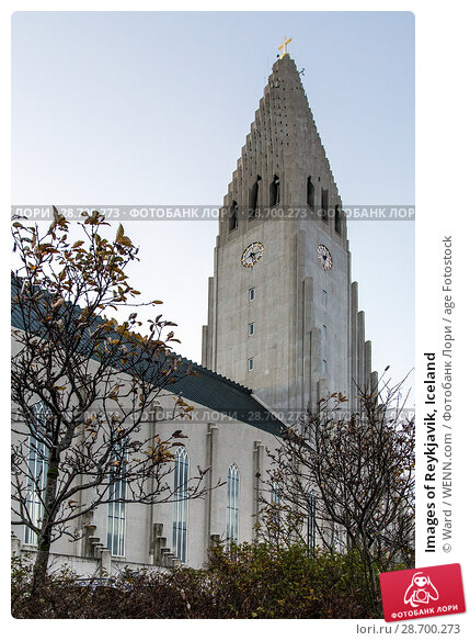 Купить «Images of Reykjavik, Iceland Featuring: Reykyavik Catherdral Where: Reykyavik, Iceland When: 26 Oct 2016 Credit: Ward/WENN.com», фото № 28700273, снято 26 октября 2016 г. (c) age Fotostock / Фотобанк Лори