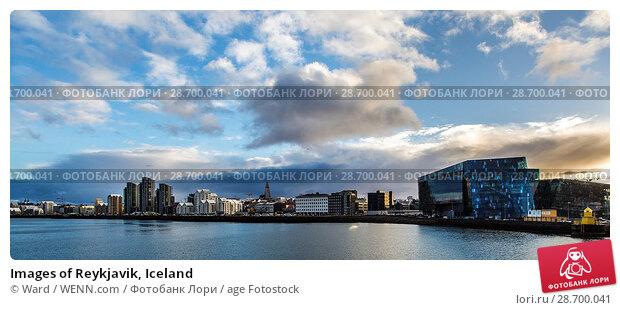 Купить «Images of Reykjavik, Iceland Featuring: Reykyavik Where: Reykyavik, Iceland When: 26 Oct 2016 Credit: Ward/WENN.com», фото № 28700041, снято 26 октября 2016 г. (c) age Fotostock / Фотобанк Лори