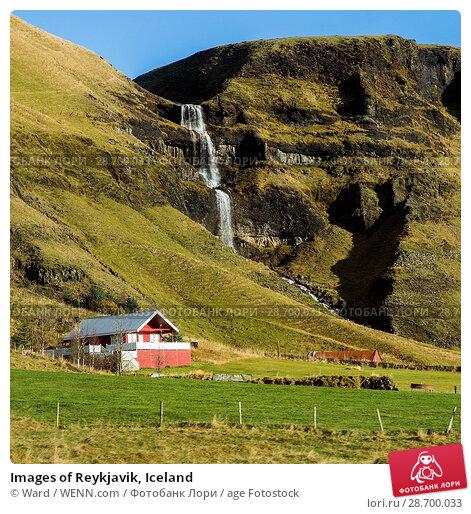 Купить «Images of Reykjavik, Iceland Featuring: waterall, Iceland Where: Reykyavik, Iceland When: 26 Oct 2016 Credit: Ward/WENN.com», фото № 28700033, снято 26 октября 2016 г. (c) age Fotostock / Фотобанк Лори