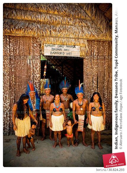 Indian, Indigenous family, Dessano Tribe, Tupé Community, Manaus, Amazônia, Amazonas, Brazil. Стоковое фото, фотограф Aleruaro / age Fotostock / Фотобанк Лори