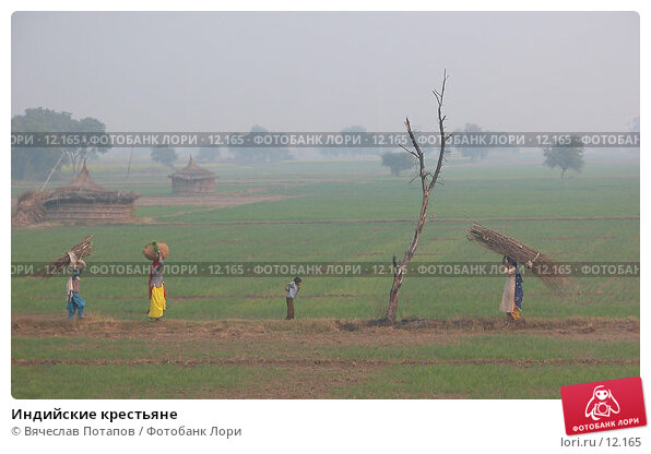 Индийские крестьяне, фото № 12165, снято 11 декабря 2004 г. (c) Вячеслав Потапов / Фотобанк Лори
