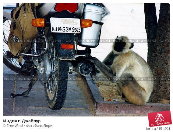Индия г. Джайпур, эксклюзивное фото № 151921, снято 30 мая 2017 г. (c) Free Wind / Фотобанк Лори