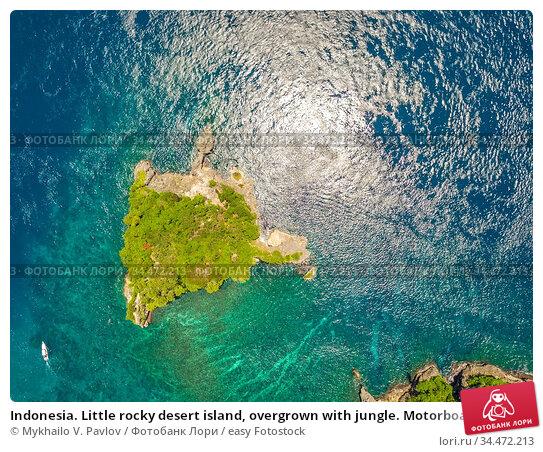Indonesia. Little rocky desert island, overgrown with jungle. Motorboat... Стоковое фото, фотограф Mykhailo V. Pavlov / easy Fotostock / Фотобанк Лори